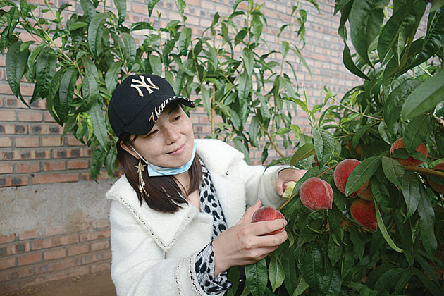 开发现代休闲农业 促进旅游产业发展